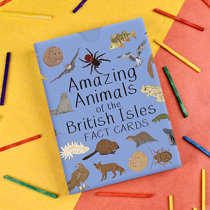 Button and Squirt - Cards (Amazing Animals of the British Isles)