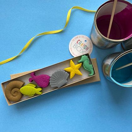 Crayon Box - Seaside Crayons