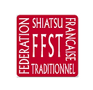 logo ffst