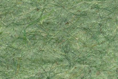 Folha papel verde claro