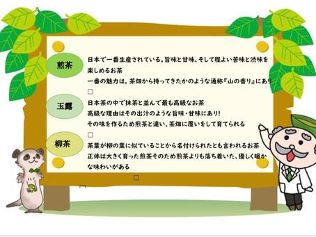 大阪ー高槻市でお茶の淹れ方、飲みくらべ体験教室
