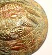 Fish Shoal Dish