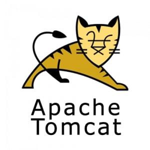 Il est conseillé de désactiver le protocole AJP de la configuration de Tomcat pour utiliser le serveur d'exécution Squash TF