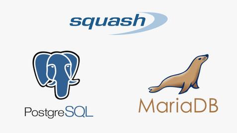Comment utiliser et configurer une base de données externe avec Squash TM ?