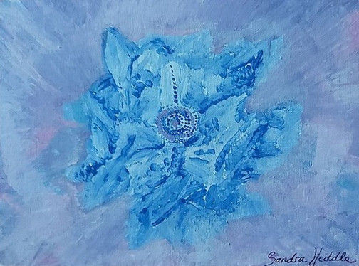 Dainty by Sandra Heddle