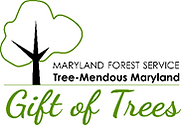 Gift of Trees.png