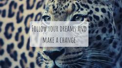 Foolow your dreams