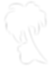 Troipical koala logo no text white.png