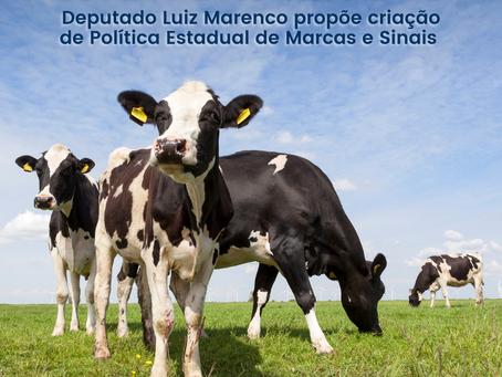 Combate ao abigeato: deputado Luiz Marenco propõe criação de Política Estadual de Marcas e Sinais
