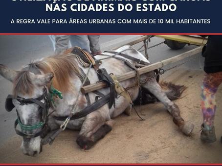 Projeto proíbe gradativamente a utilização de animais com cargas nas cidades do Estado