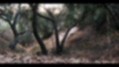 Screen Shot 2018-10-19 at 12.27.04 PM.pn