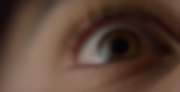 Screen Shot 2020-01-24 at 7.14.10 PM.png