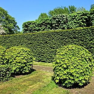 Entretien Espaces Verts par nos paysagistes