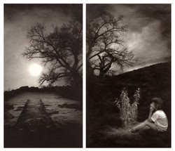 Here nor There 4 & 8 (diptych)