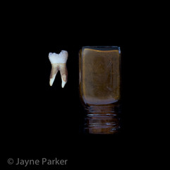 Human Tooth & Bottle