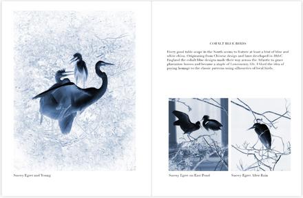 Cobalt Blue Birds