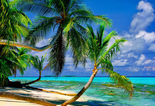 Acheter terrain au Costa Rica et autre achat immobilier au Costa Rica.