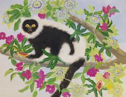 Lemur with Passion Flower Fruit