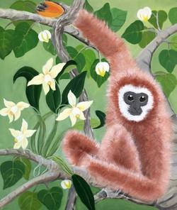 Gibbon with Mango