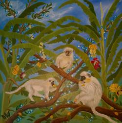 3 African Green Monkeys