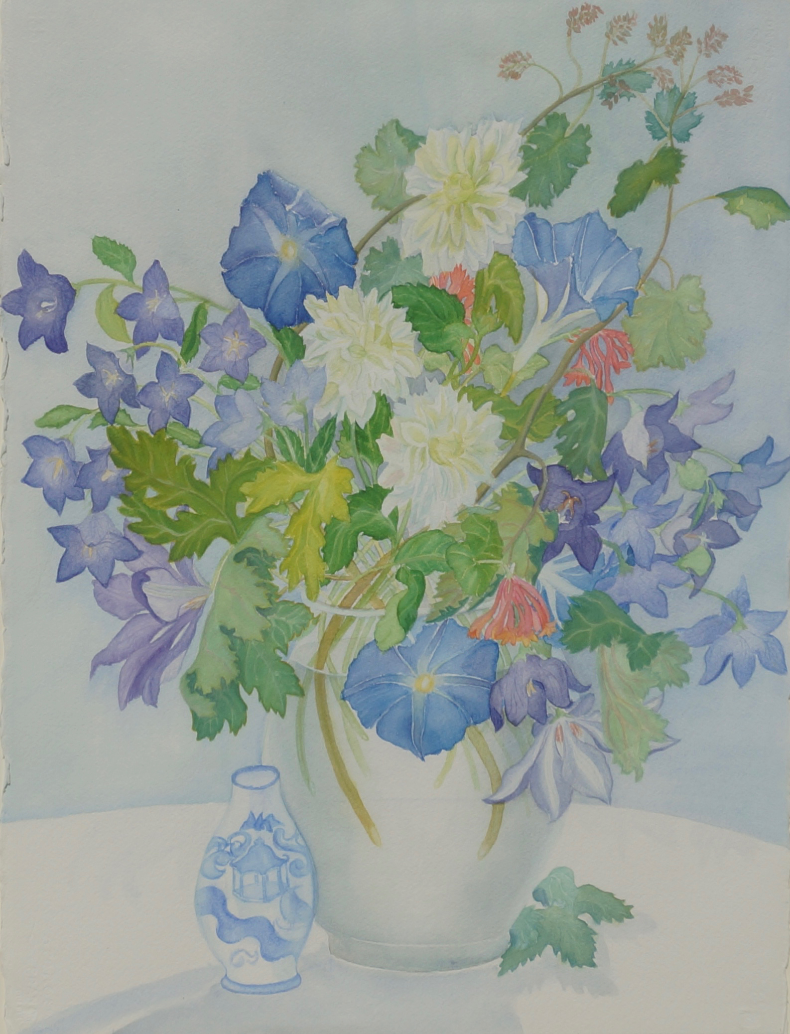 Platycodon, Morning Glories, Dahlias