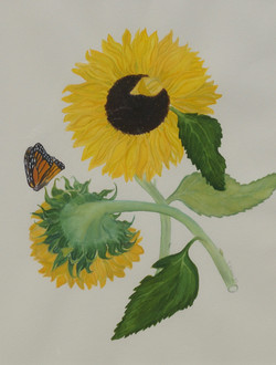 Sunflowers with Monarch