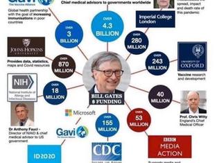 Bill Gates' Money Tree
