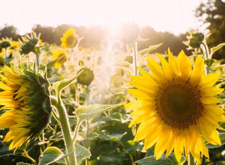 Boost jouw energie en creëer een positieve energiespiraal!