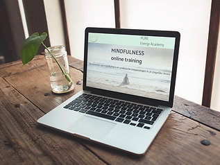 mindfulness online training