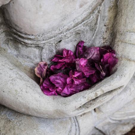 Ontwikkel mildheid en mededogen met Metta meditatie