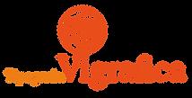 logo vettoriale Vigrafica arancio.png