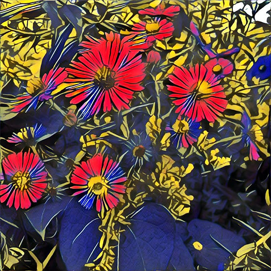 Photography flowers photoshop red and bl