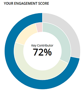 Engagement Score Graphic.PNG