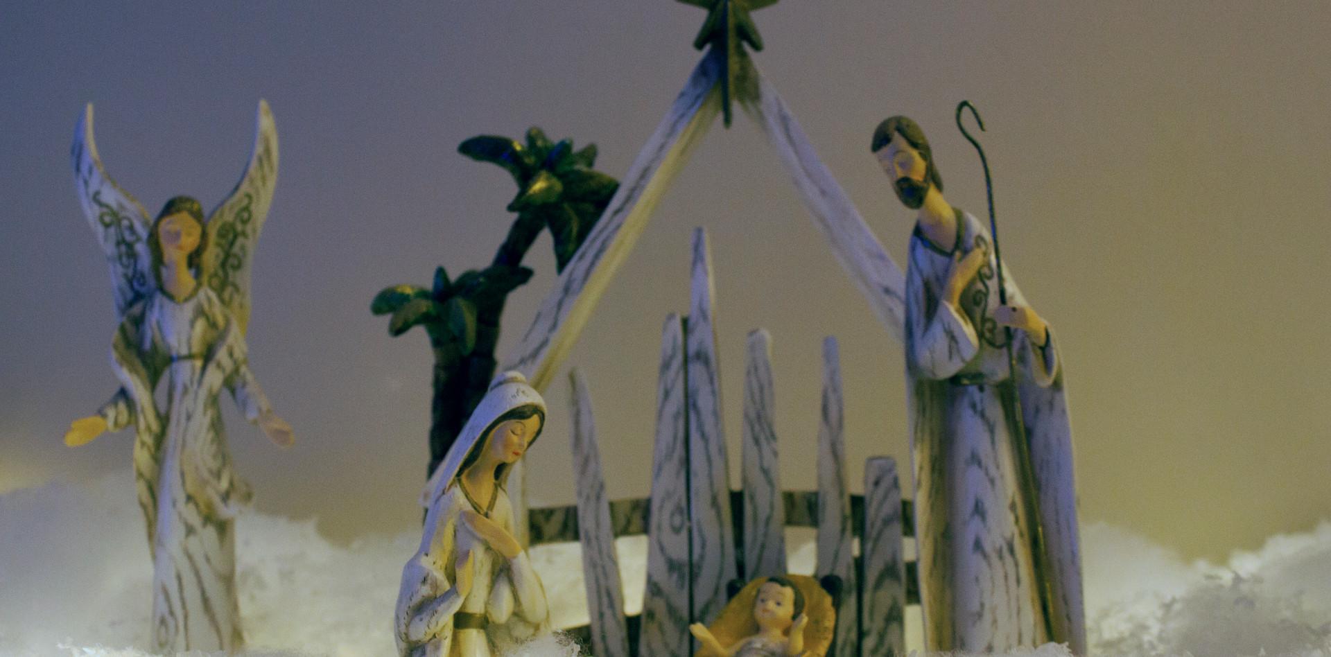 Nativity Celebration