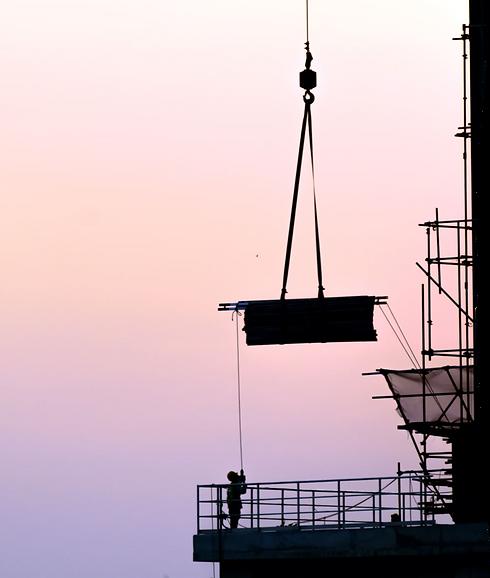 Crane at dawn.png