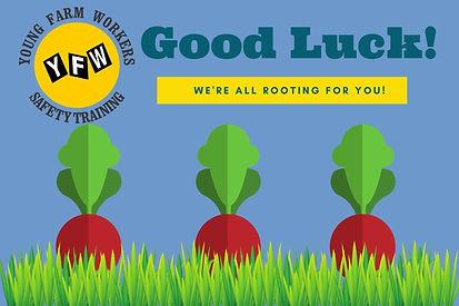 Good Luck Card YFW.jpg