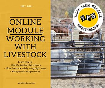 Livestock Safety.png