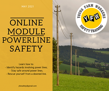 Powerline Safety.png