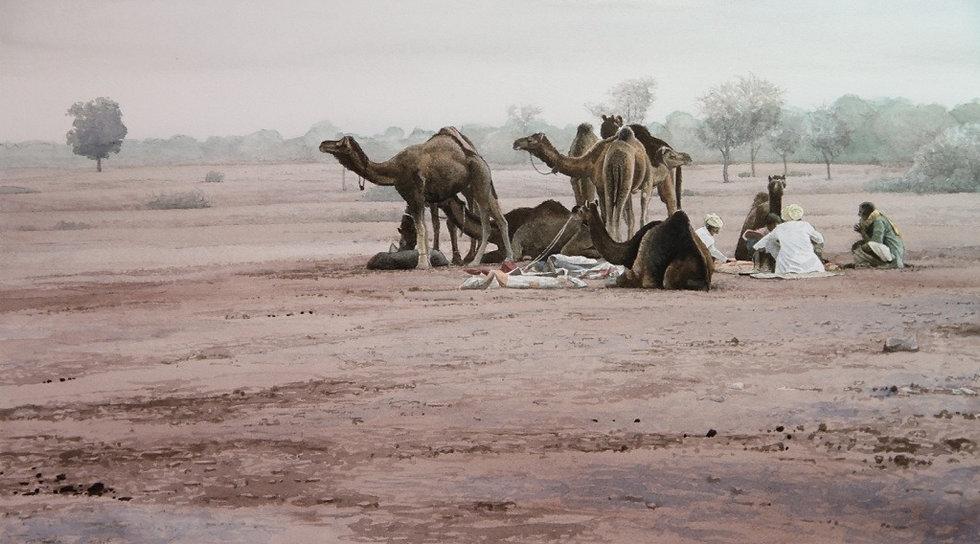 Encampment, Thar Desert
