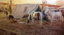 Horse Market, Rajasthan