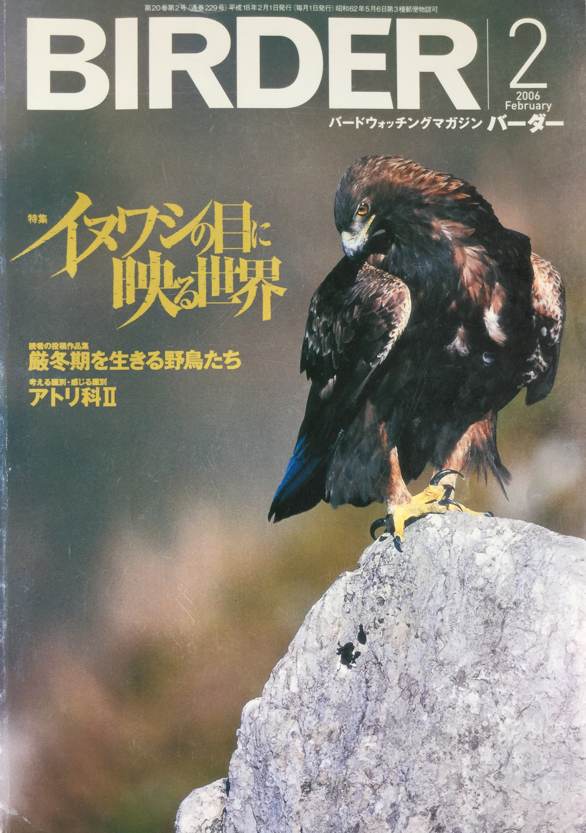 Birder (Japan) 2005
