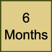 6 month subscription plan.