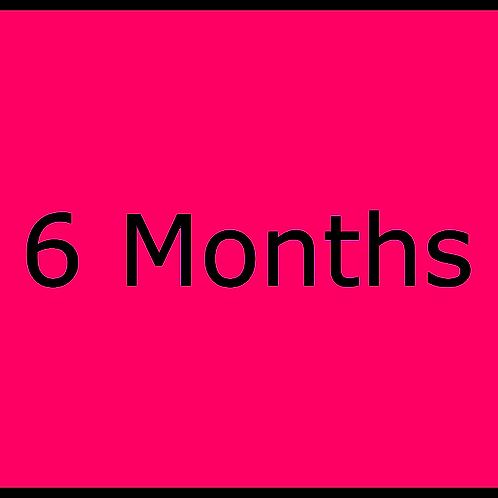 6 month subscription plan. Auto-renew until plan expires.