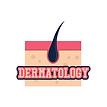 дерматология.png