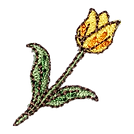mukaraチューリプ.png
