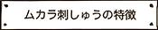 ムカラ刺しゅうの特徴.png
