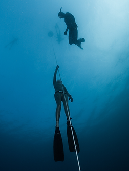freediving.png