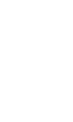 hula 2.png