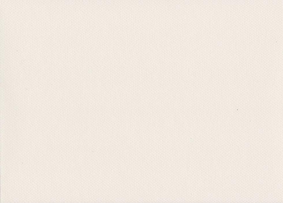 paper-texture-1-white-300dpi_edited.jpg