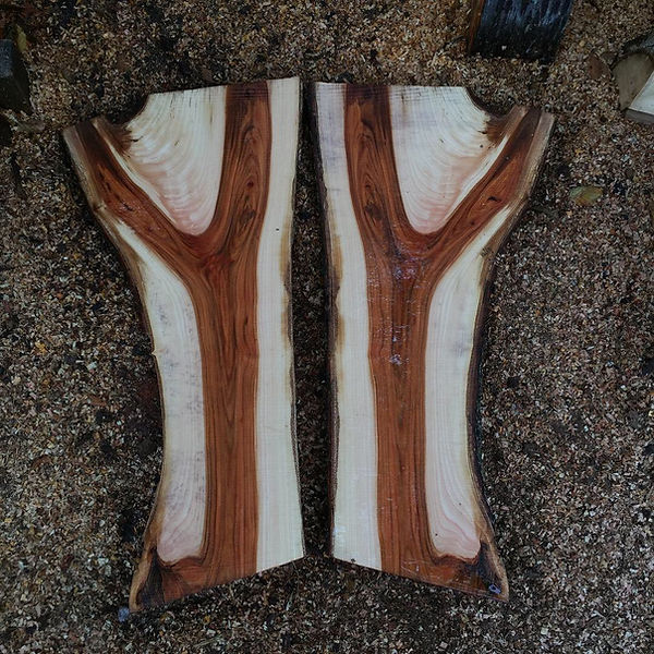 English Elm Crotch Sections £120.00 (Pai